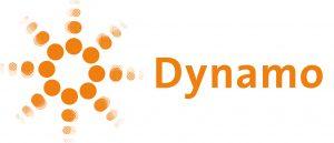 Logo Dynamo RGB groot